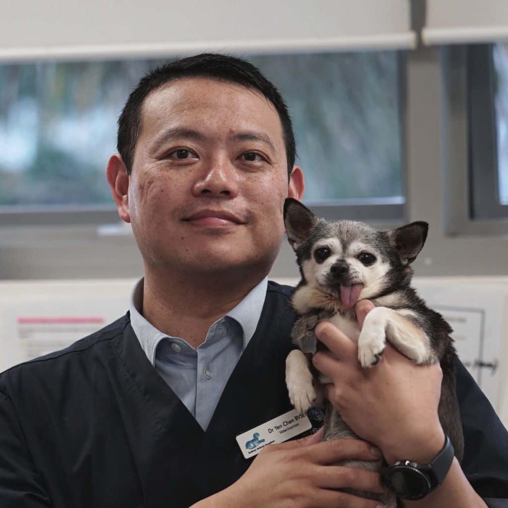 Dr Yen Chen