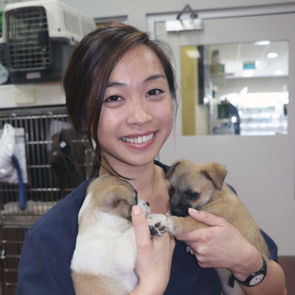 Dr Bonnie Tse