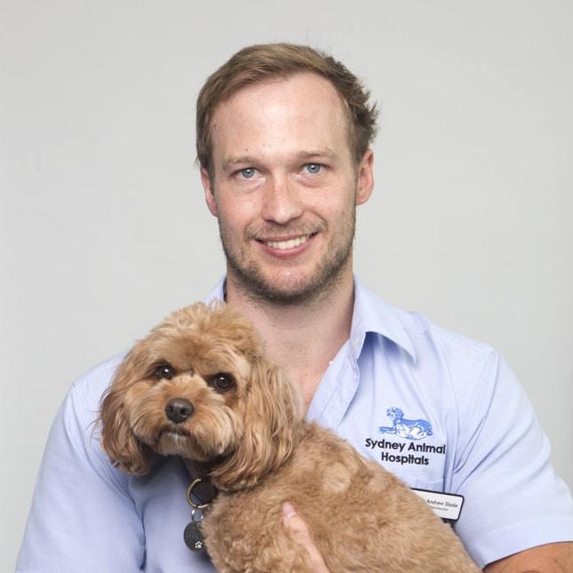 Dr Andrew Slade