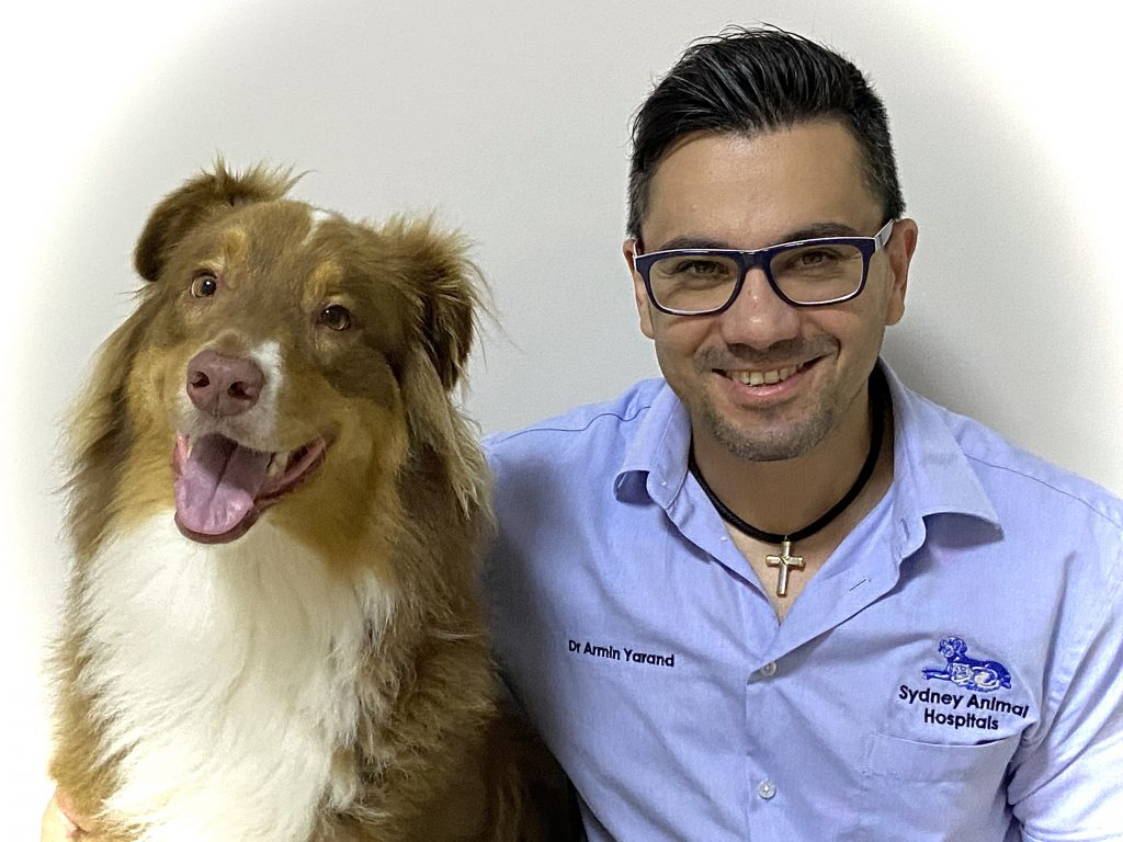 Dr Armin Yarand