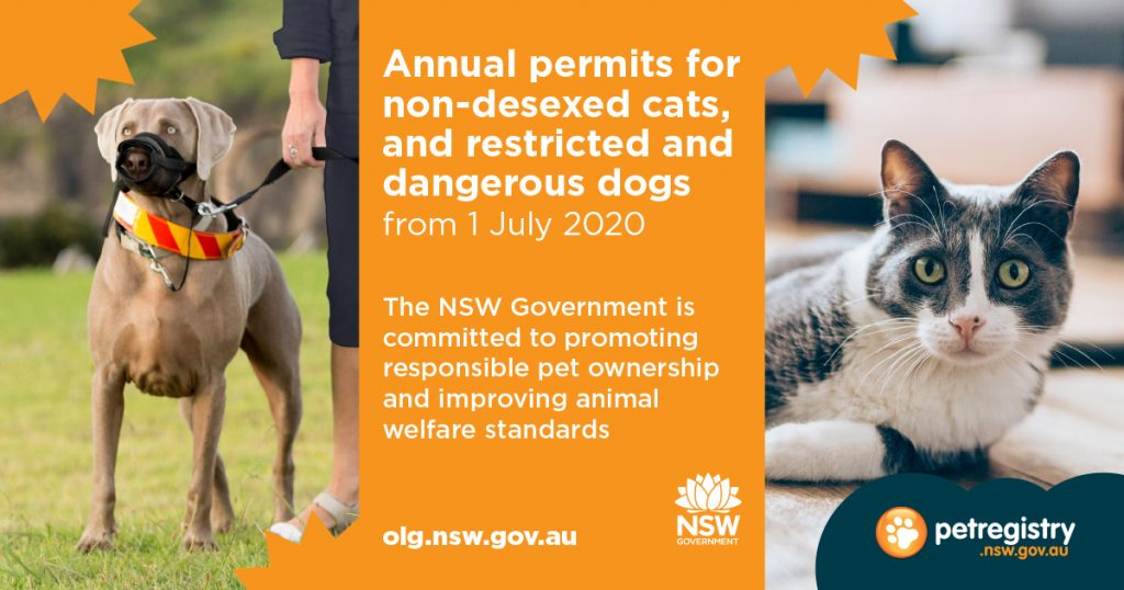 NSW Government introduction of annual permits for non-desexed cats and dangerous / restricted dogs